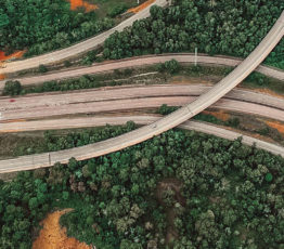 Biodiversity & linear infrastructure