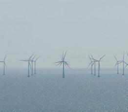 Club 3 – Changements globaux et gestion durable de la biodiversité dans les territoires marins et côtiers