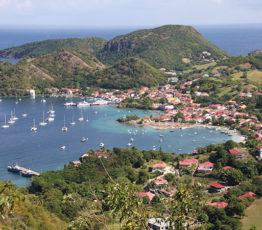 Club 4 – Changements globaux et gestion durable de la biodiversité en Outre-mer