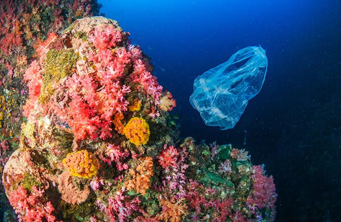 Action n°4 : Je refuse les plastiques, car le recyclage ne suffit pas