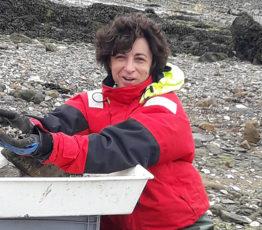 L'huître creuse du Pacifique : de l'assiette à la recherche contre le cancer