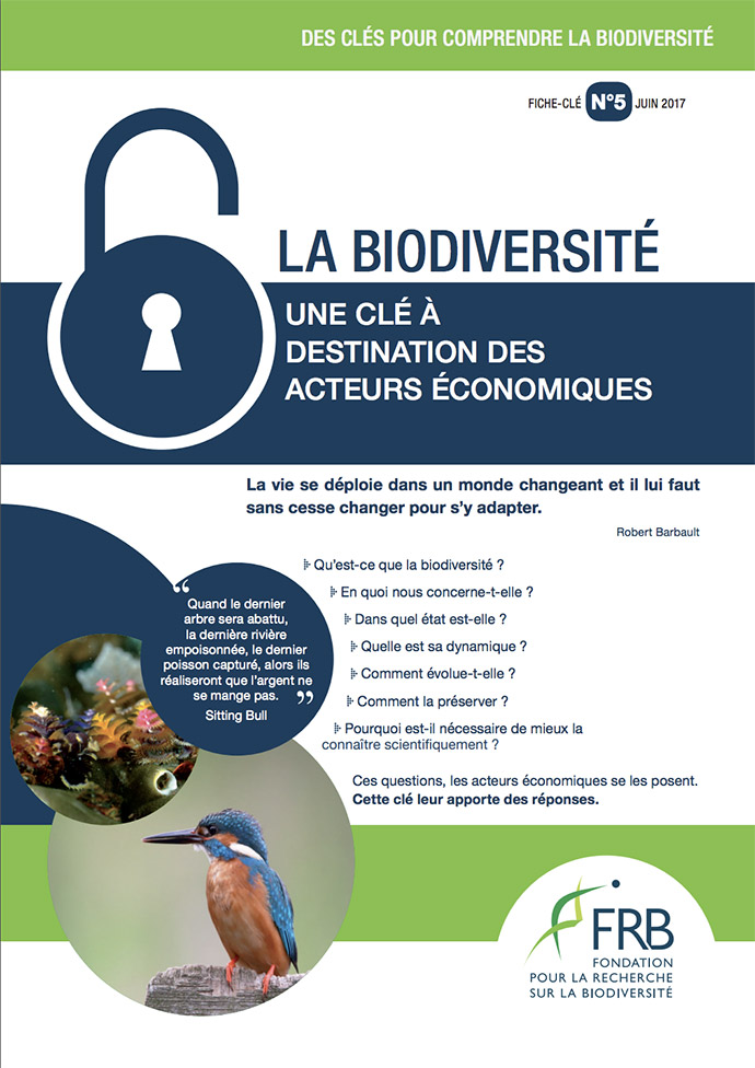 Biodiversité – Une clé à destination des acteurs économiques