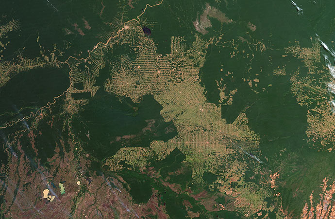 Au Brésil : grandes incertitudes sur la protection de la forêt amazonienne