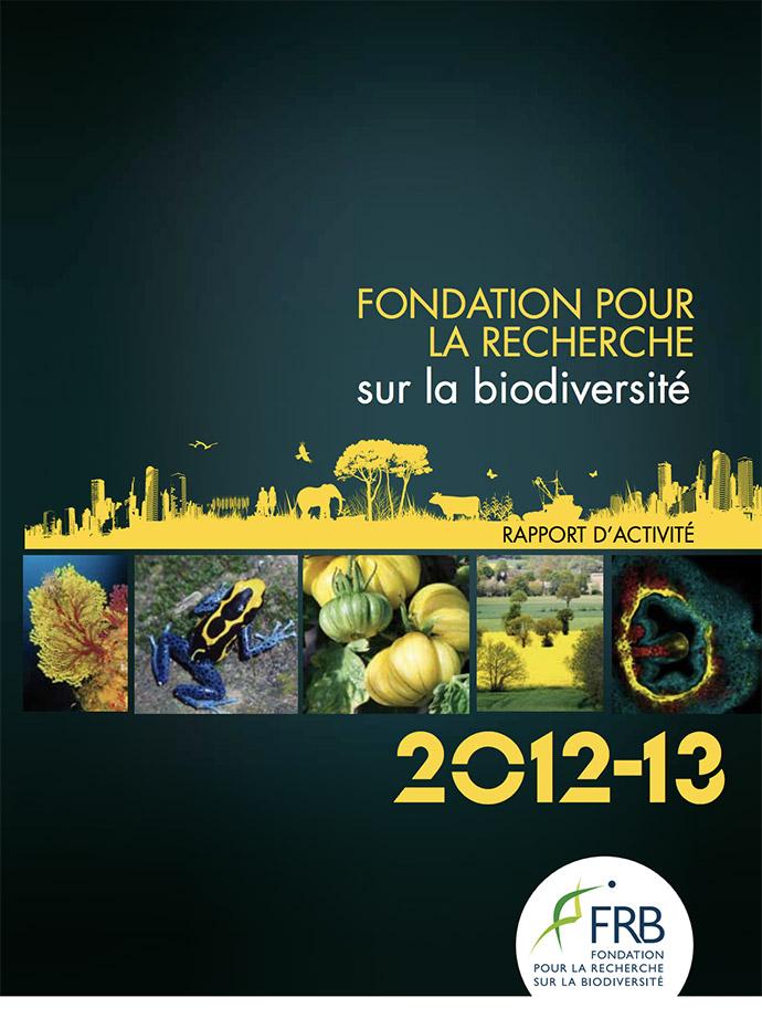 Rapport d'activité 2012-2013
