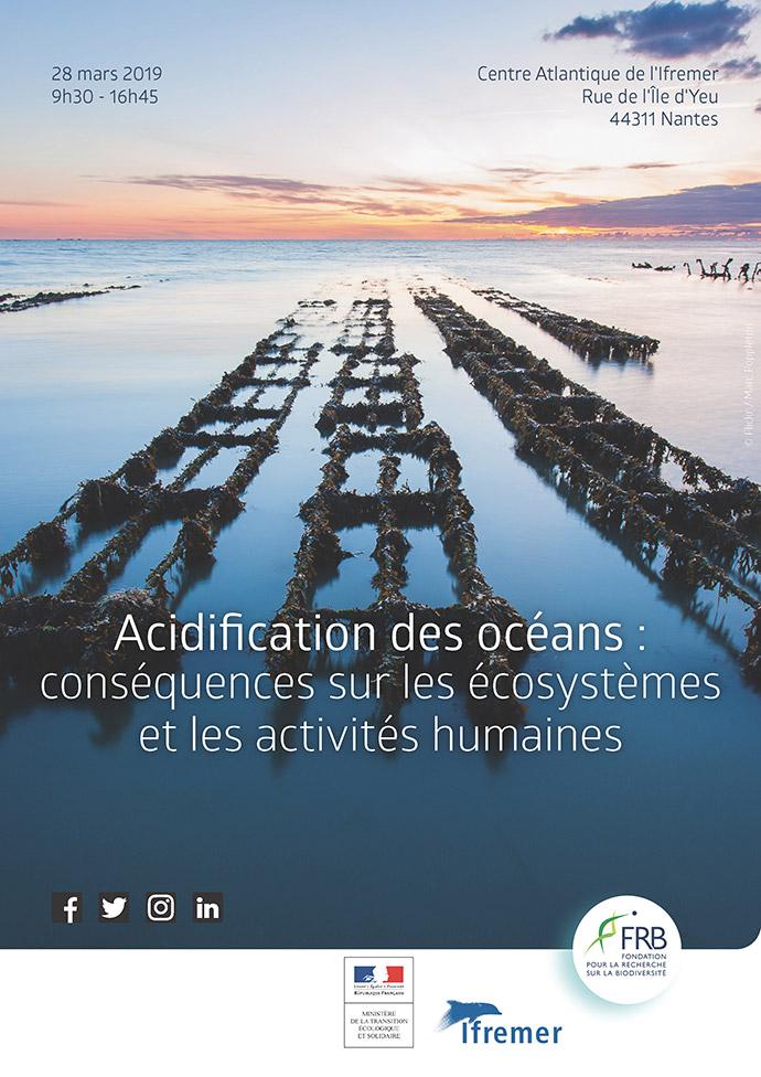 Acidification des océans : conséquences sur les écosystèmes et les activités humaines