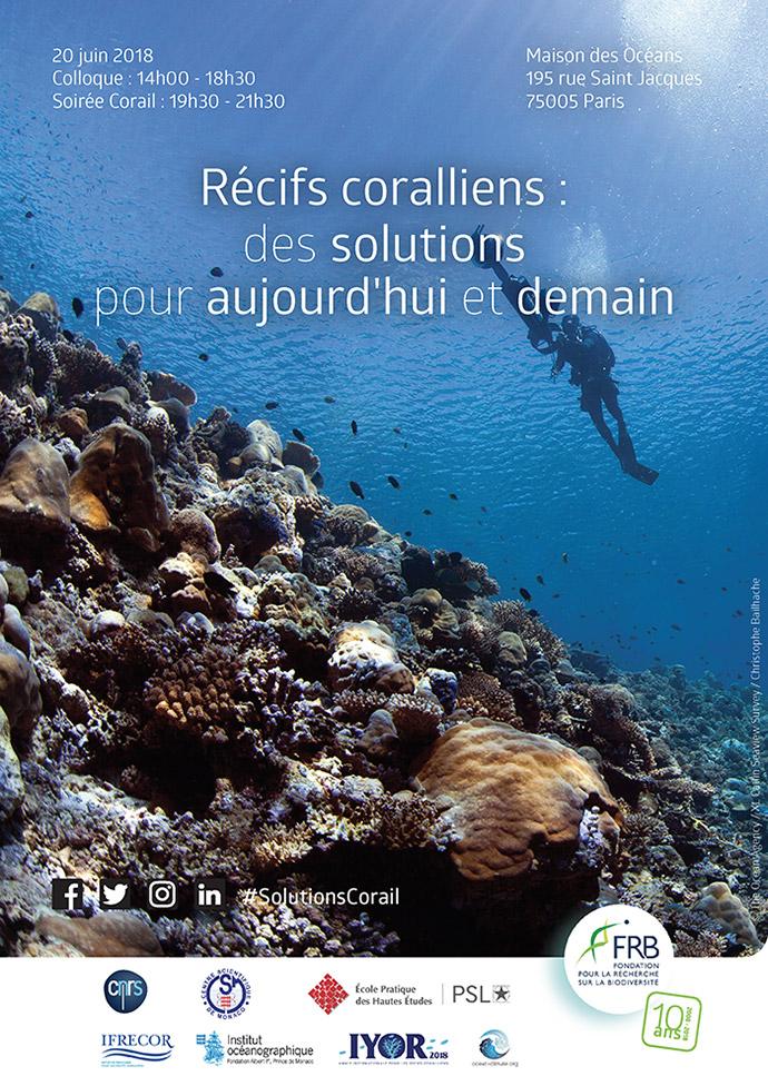 Récifs coralliens : des solutions pour aujourd'hui et demain