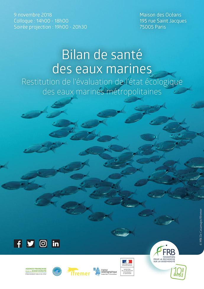 Bilan de santé des eaux marines (DCSMM)