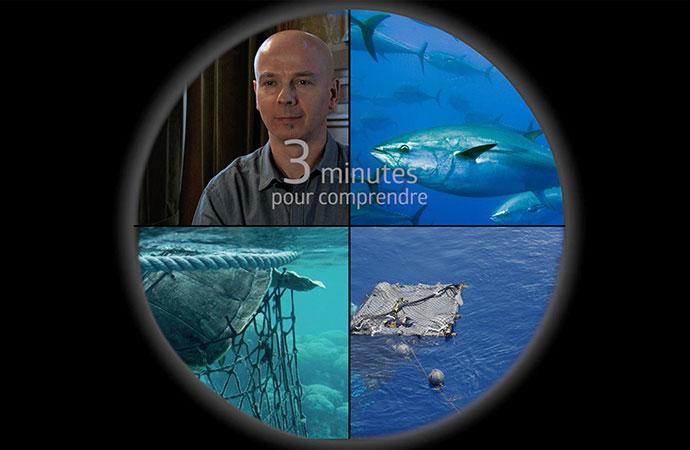 [DCSMM] 3 minutes pour comprendre le coût économique et sociale de la dégradation du milieu marin