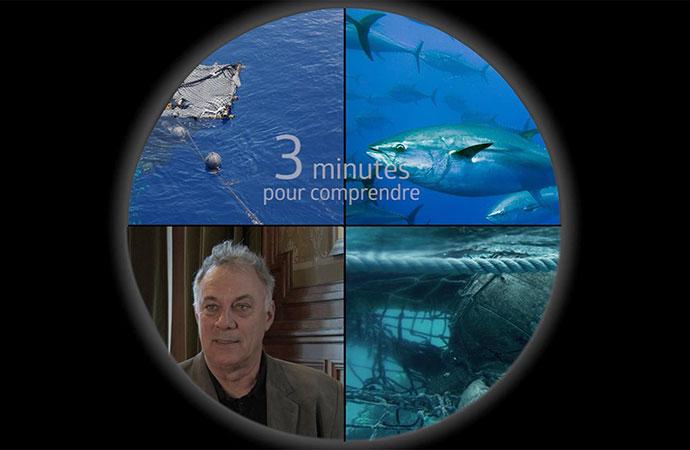 [DCSMM] 3 minutes pour comprendre l'impact des déchets en milieu marin
