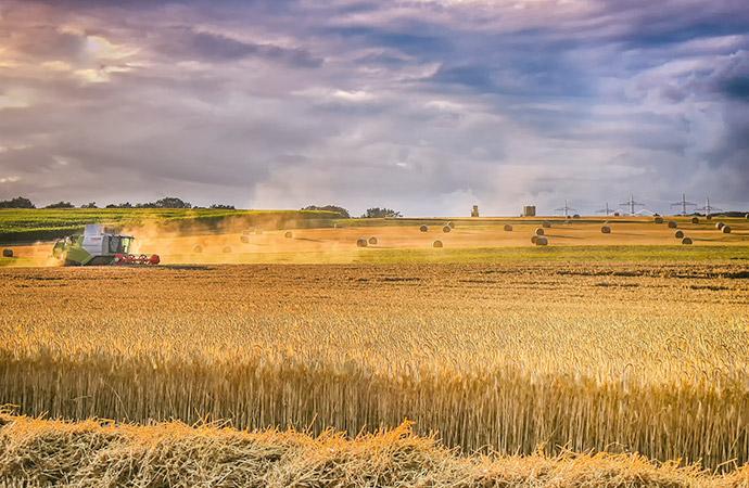 Les écosystèmes agricoles :  une évaluation dans le cadre du programme EFESE