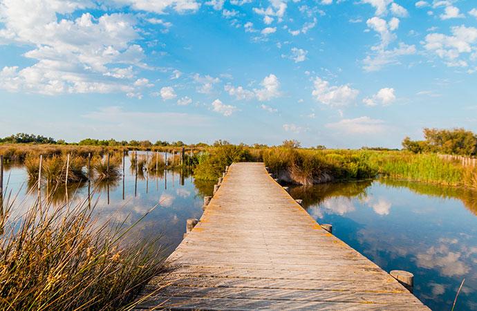 Les milieux humides et aquatiques continentaux :  une évaluation dans le cadre du programme EFESE