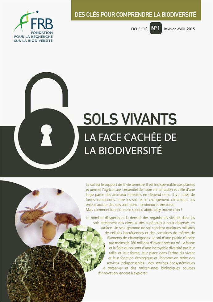 Sols vivants – La face cachée de la biodiversité