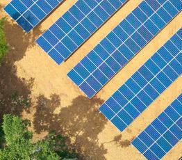 Biodiversity & energy