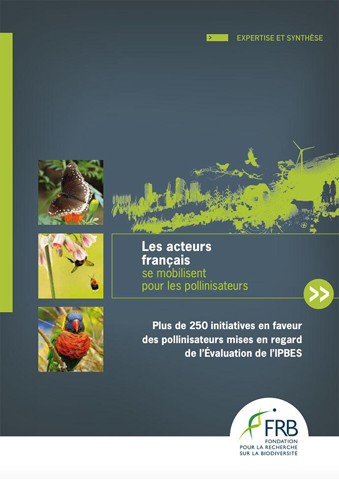 Les acteurs français se mobilisent pour les pollinisateurs
