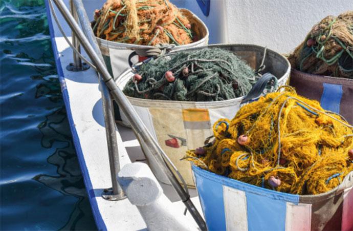 L'exploitation des ressources halieutiques : pressions sur les écosystèmes marins, état des pêcheries, impacts sur la biodiversité et aménagement de ses usages
