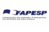 São Paulo Research Foundation