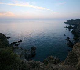 Les aires marines partiellement protégées sont-elles des facteurs d'efficacité écologique ?