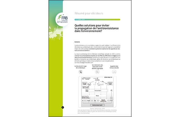 [Résumé pour décideurs] Quelles solutions pour éviter la propagation de l'antibiorésistance dans l'environnement ?