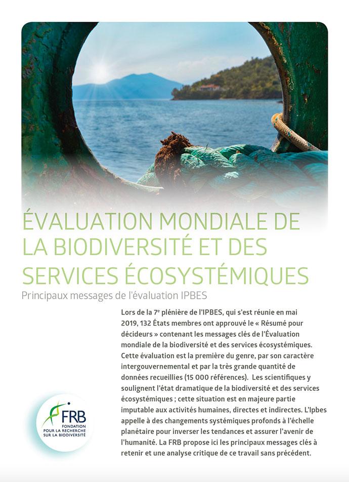[Ipbes 7] Messages-clés de l'évaluation mondiale de la biodiversité et des services écosystémiques