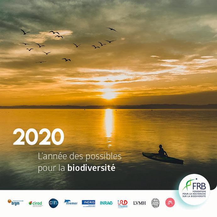 2020, l'année des possibles pour la biodiversité…