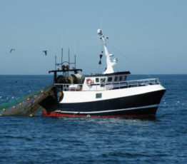 [Appel à projets – FRB-Cesab / France Filière Pêche]