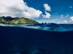 #ScienceDurable – Pour des aires marines protégées efficaces