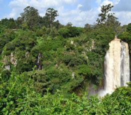 Incidence du changement climatique sur la biodiversité dans les écosystèmes forestiers et littoraux d'Europe et d'Afrique