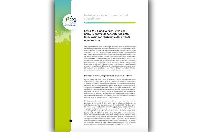 [Covid-19 et biodiversité] La FRB et son Conseil scientifique s'expriment