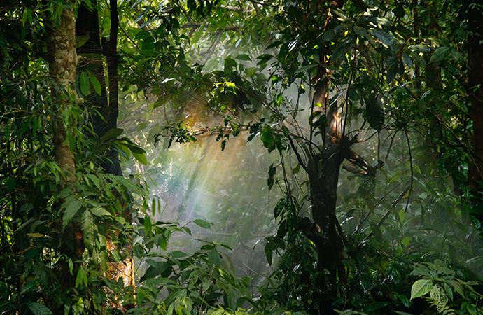 [#ScienceDurable] En avril, la campagne s'intéresse au climat et à la biodiversité