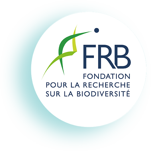 [Biodiversité et pandémies] La FRB auditionnée par l'Assemblée nationale
