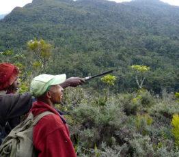 #ScienceDurable – Déforestation à Madagascar : concilier développement et conservation de la biodiversité