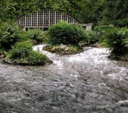 #ScienceDurable – Les promesses de la biodiversité des eaux souterraines