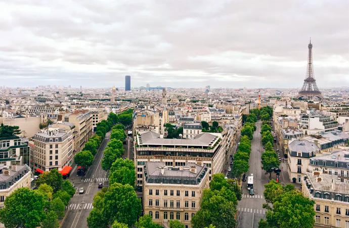 #ScienceDurable – Les « forêts urbaines », essentielles aux villes de demain