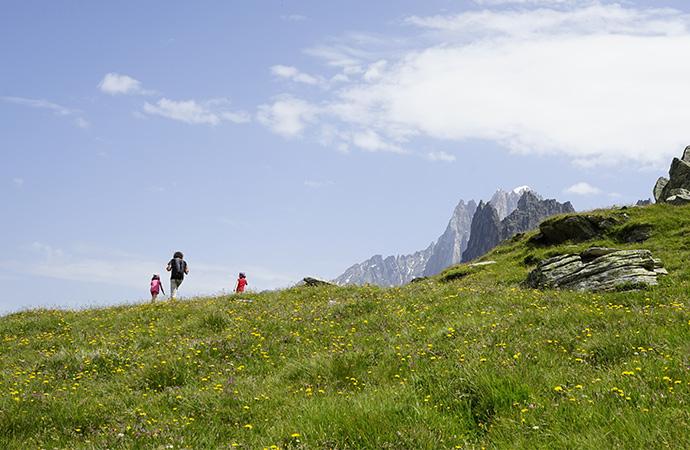 Les politiques de conservation de la biodiversité en quête de légitimité :  cas des parcs nationaux français
