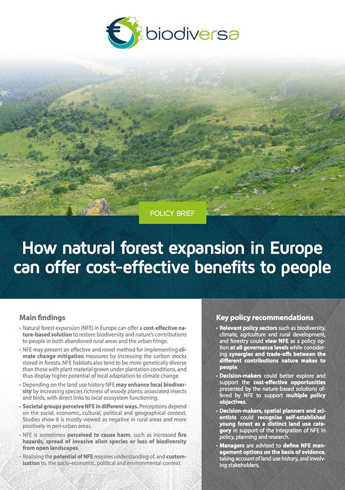 [BiodivERsA] Une note d'orientation BiodivERsA basée sur les résultats du projet SPONFOREST