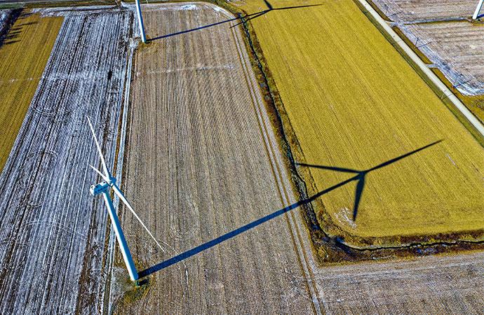 #ScienceDurable – Liens entre énergies renouvelables et biodiversité
