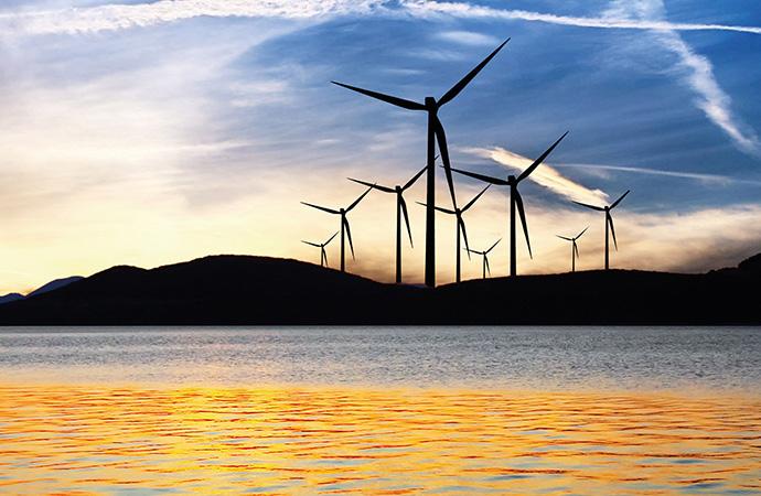 #ScienceDurable – Biodiversité et transition énergétique – Enquêtes sur des liaisons dangereuses