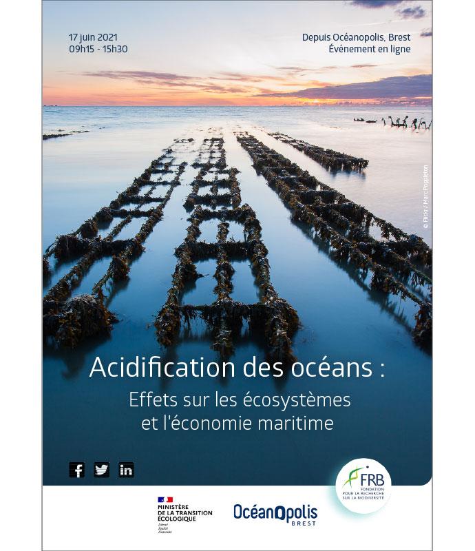 Acidification des océans : Effets sur les écosystèmes et l'économie maritime