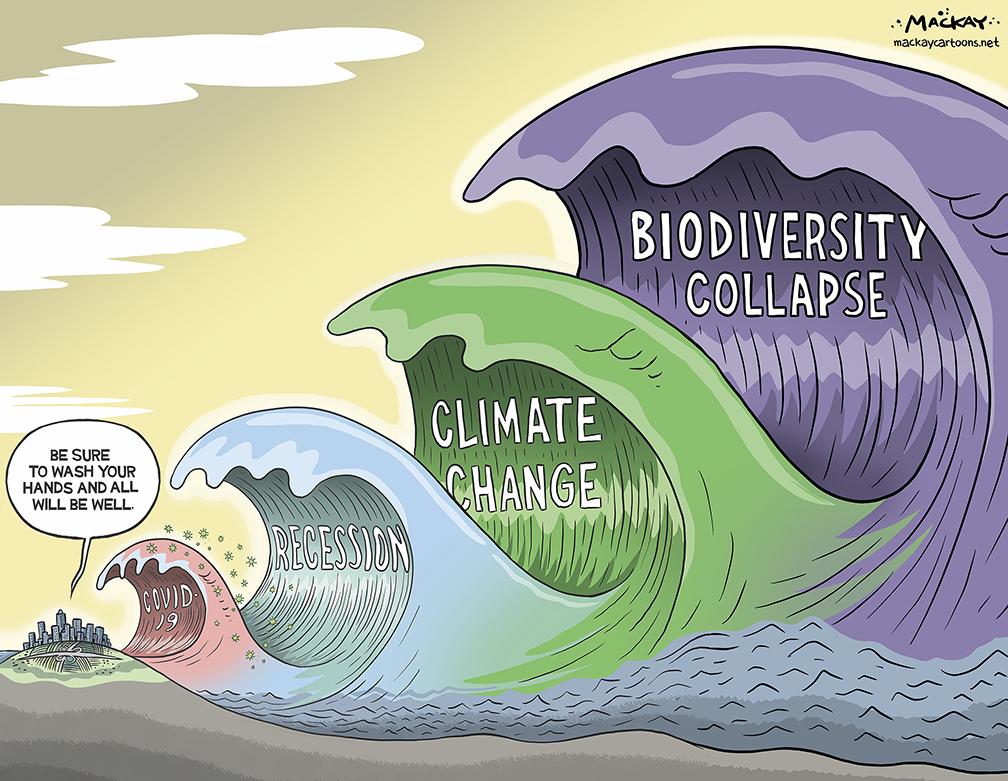 Biodiversity collapse