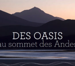 Des oasis au sommet des Andes – Exposition photographies