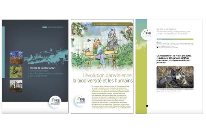[Actualités et publications] La biodiversité au cœur des débats de la rentrée